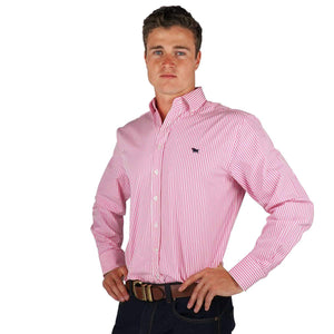 56b118bfd78b RINGERS WESTERN Birdsville Mens Semi Fitted Stripe Shirt Pink Stripe
