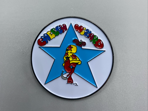 CHEECH WIZARD STAR PIN