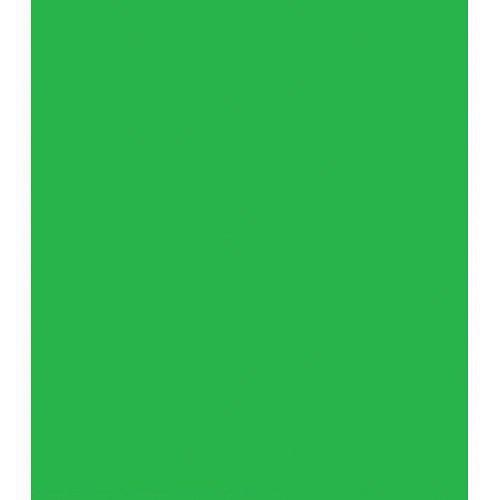 Chroma Green Backdrop (10' x 12')