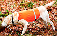 Gun Dog Vest Orange with Reflective Tape Band - Ringtails and Tall Tales Hunting, Dog Supply, and Taxidermy