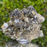 450g 8x8x6cm Silver Galena and Gold Pyrite from Peru