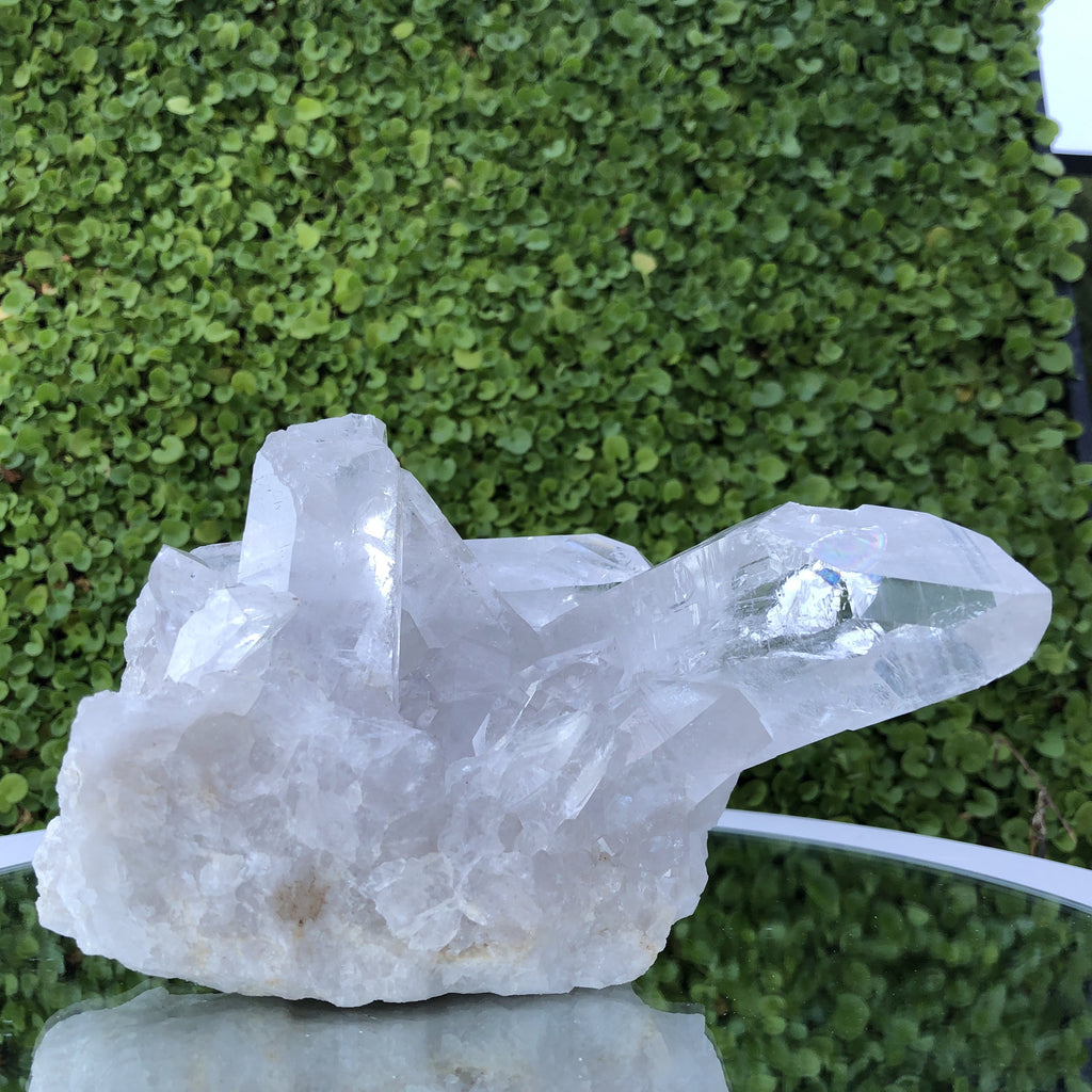 1.051kg 12x10x13cm Turtle Clear Clear Quartz from Brazil
