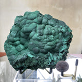 1.336kg 15x14x6cm Shiny Green Malachite from Sepon Mine, Laos