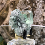 50g 5x5x3cm Glass Green and Clear Fluorite from Xianghualing,Hunan,CHINA