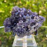 50g 7x5x3cm Purple Tanzanite Fluorite from China