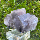 458g 13x9x5cm Clear Phantom Matrix Grey Fluorite from Balochistan, Pakistan