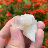 28g 4x4x2cm White Pineapple Quartz from Madagascar