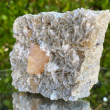 350g 9x7x5cm Orange Scheelite on Silver Muscovite from China