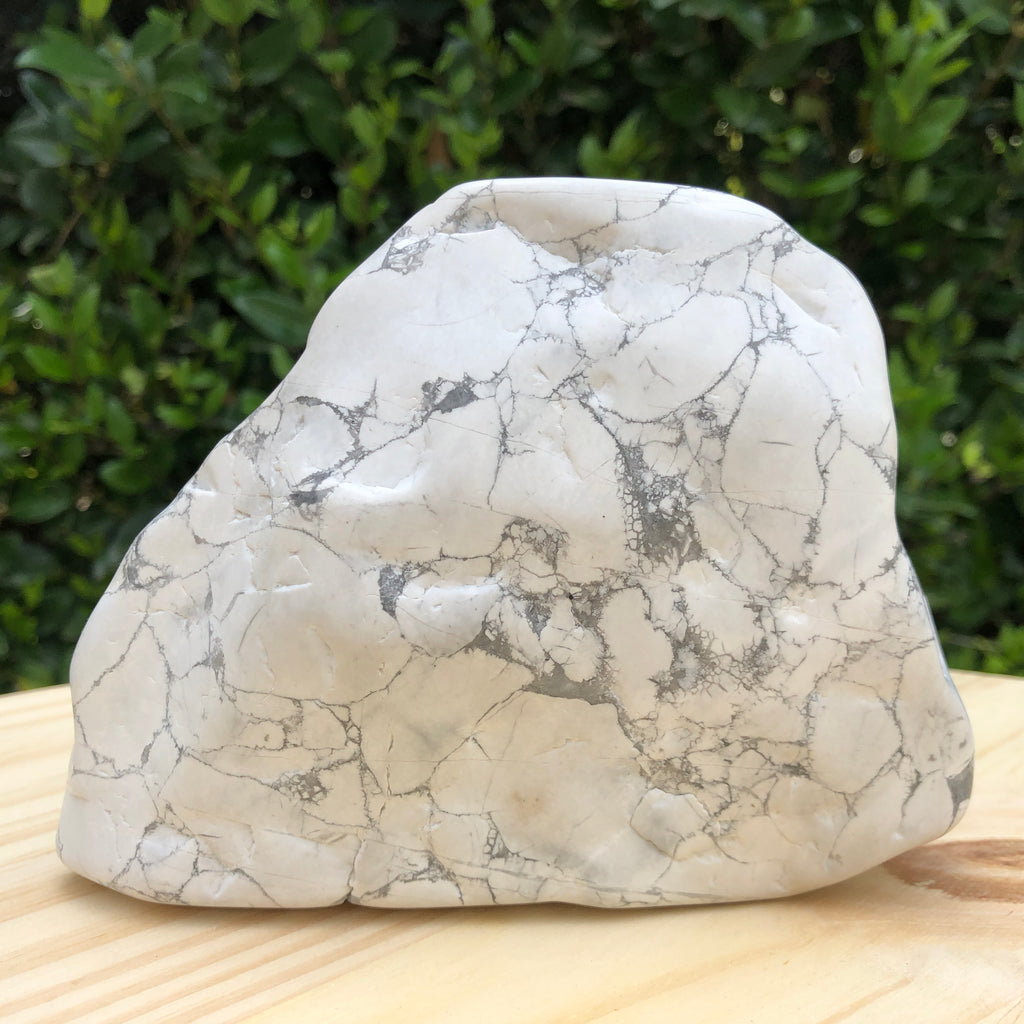 2.083kg 13x13x13cm White Howlite Polished from United States