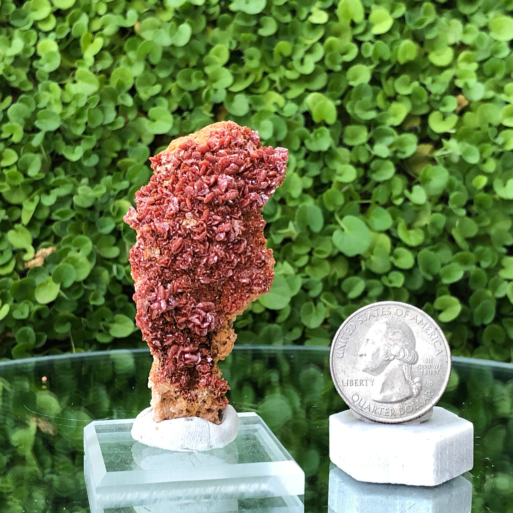 33g 6x3x2cm Multi-layer Red Vanadinite from Morocco