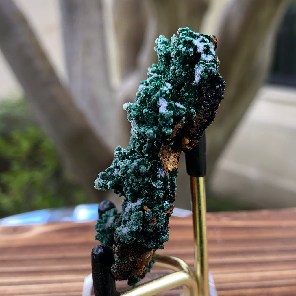 38g 1.5x2.1x0.5cm Green Malachite from Morocco