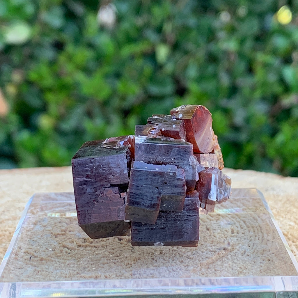 67.1g 3.5x3x2.5cm Red Vanadinite Nugget from Morocco