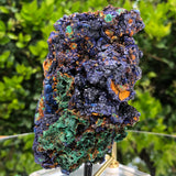 438g 11x7x6.3cm Blue Azurite w/ green Malachite from Sepon Mine, Laos