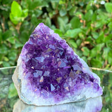 224g 8x7x6cm Purple Amethyst Cluster Cut Base from Brazil