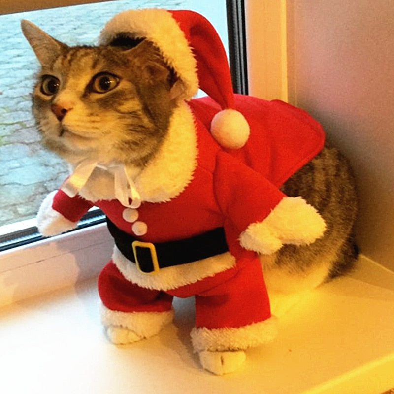 Cat Christmas.Christmas Cat Clothes Costume Clothes For Cats New Year Puppy Outfit Pet Cat Clothes