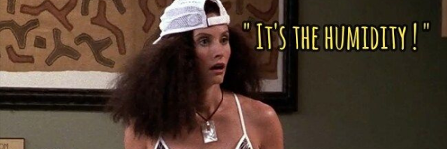"""Image of Monica Geller from Friends saying """"It's the Humidity!"""""""