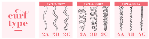 Curl Type Graphic