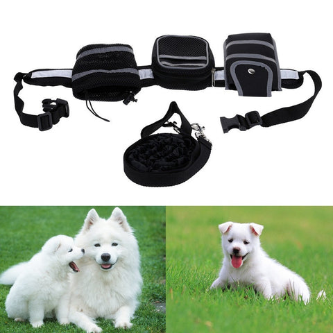 Dog Collar Traction Leash  (Running/Walking/Jogging Leash & Waist Belt For Dog's Supplies)