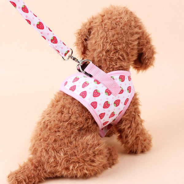 Breathable Dog Harness W/Leash