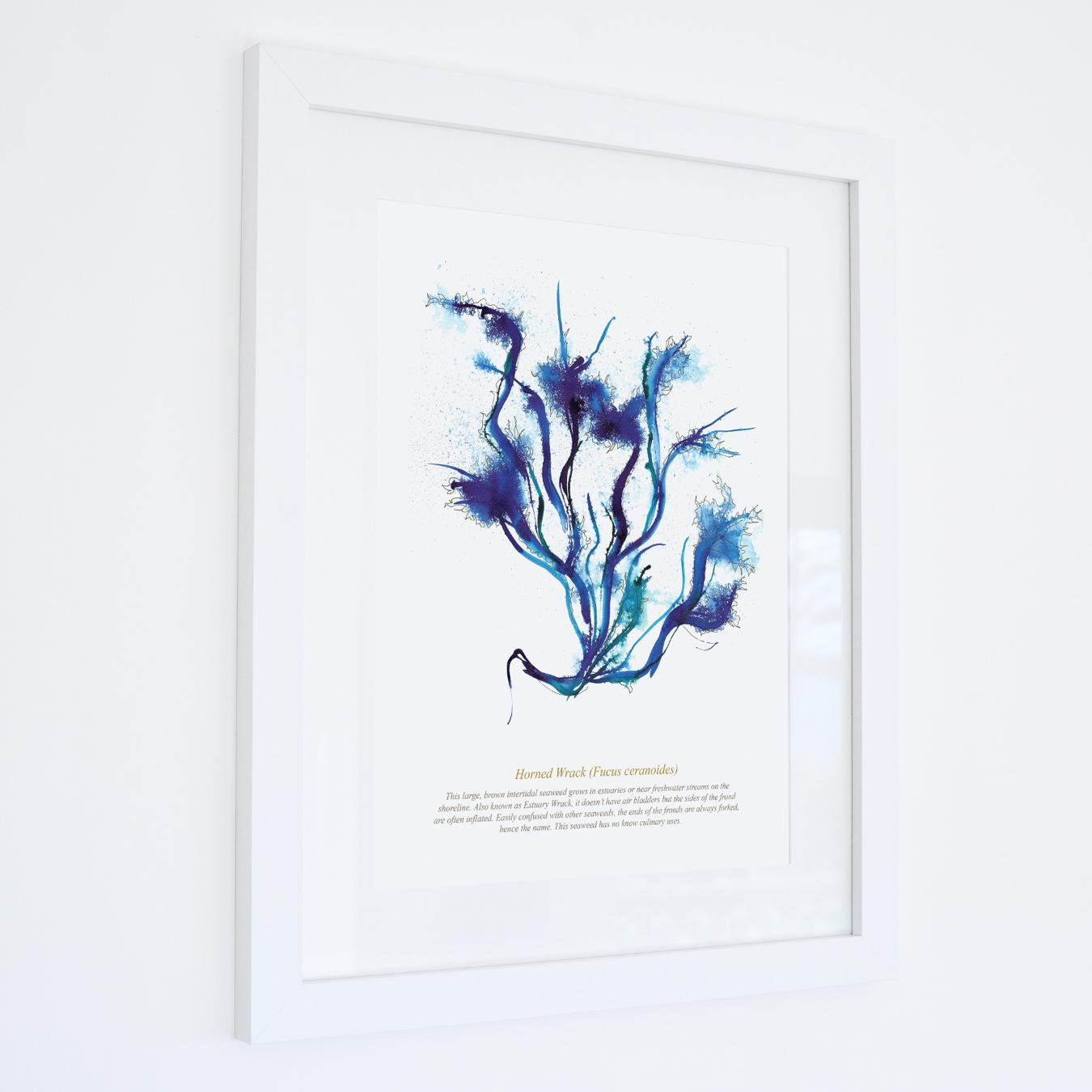 Horned Wrack Watercolour Print SeaKisses Wall Art-SeaKisses