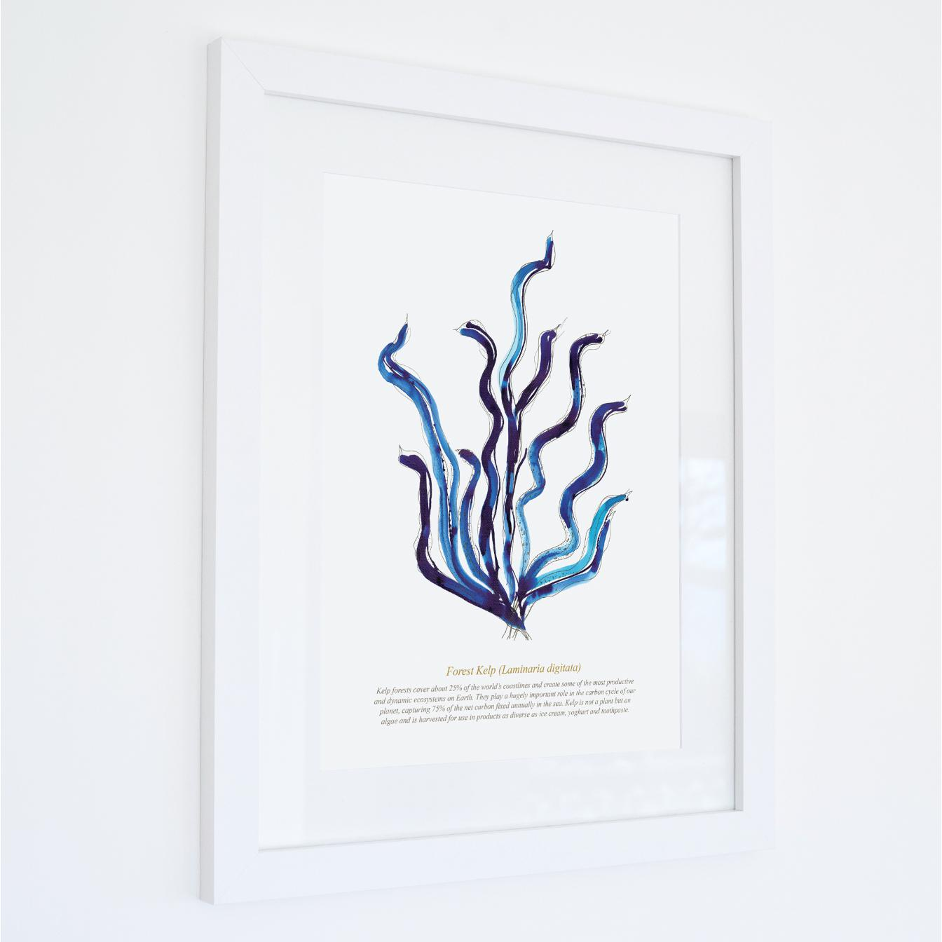 Forest Kelp Watercolour Print SeaKisses Wall Art-SeaKisses