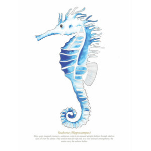 Seahorse Watercolour Print SeaKisses Wall Art-SeaKisses