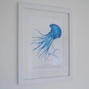 Jellyfish Watercolour Print SeaKisses Wall Art-SeaKisses