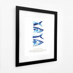 Mackerel Watercolour Print SeaKisses Wall Art-SeaKisses
