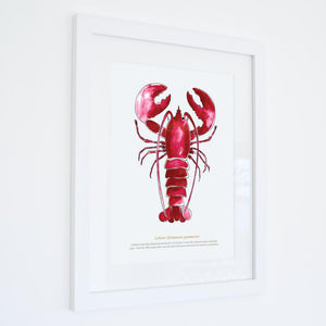 Red Lobster Print SeaKisses Wall Art-SeaKisses