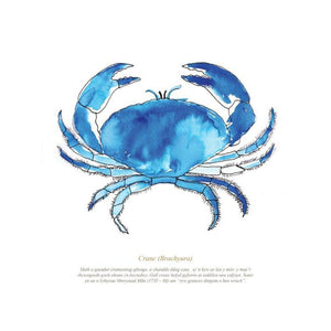 Crab Watercolour Print Coastal Wall Art by SeaKisses