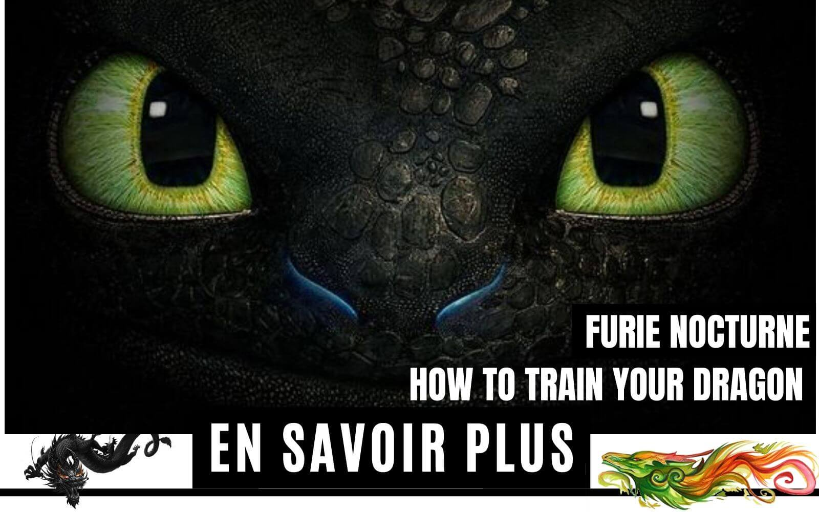 Furie Nocturne  How To Train Your Dragon  Franchise Dragons