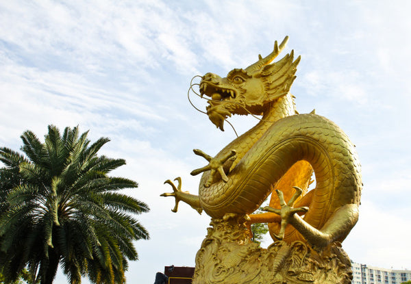 Dragon de Thailande en Or