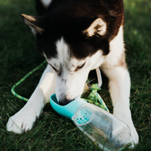 Load image into Gallery viewer, Pearl Dog Water Bottle