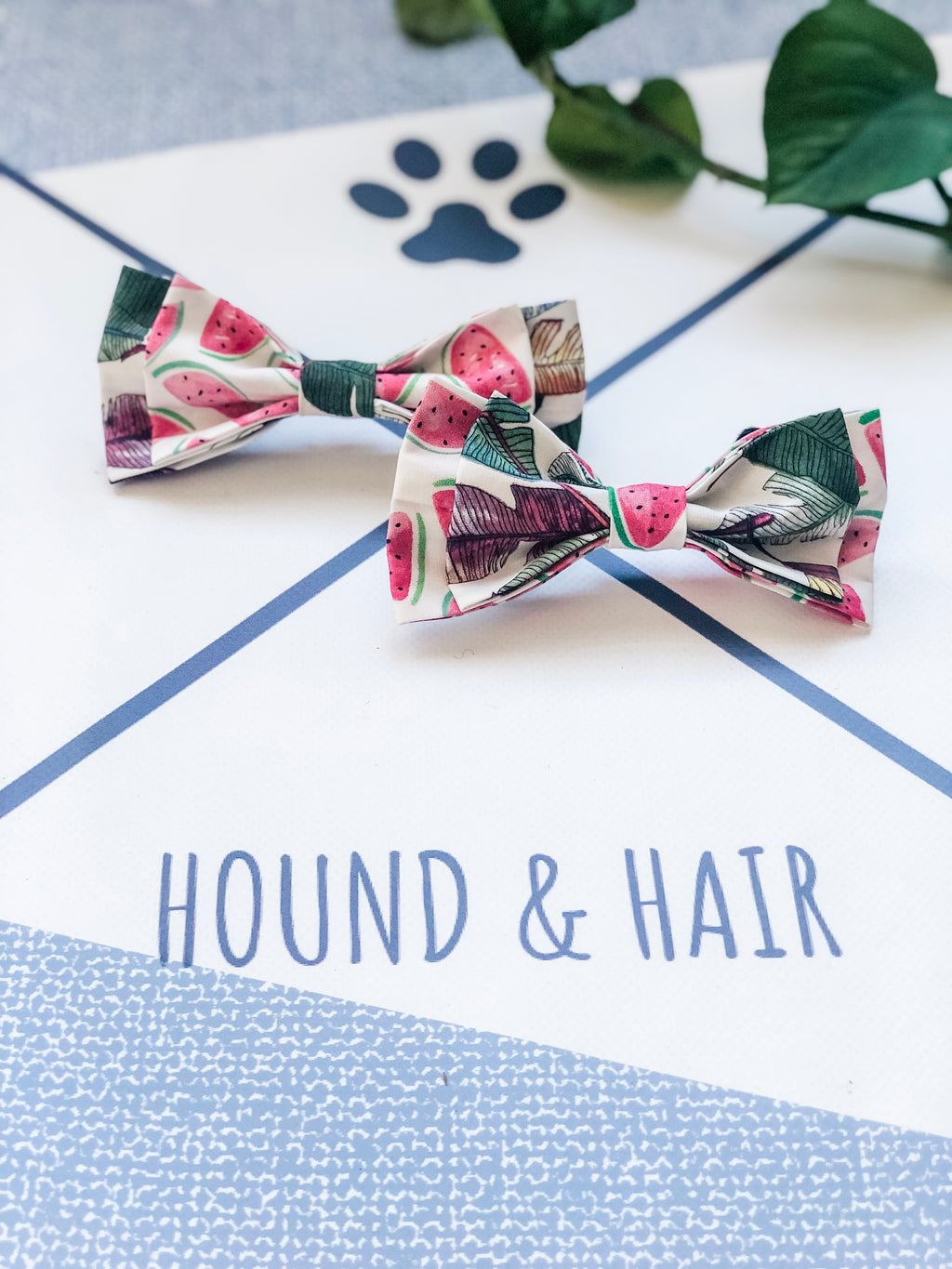 Double Dog Bow tie | Palms x Watermelon