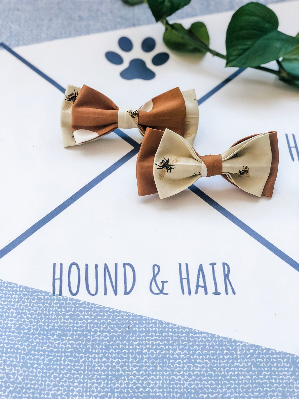 Double Dog Bow tie | Bees x Spots