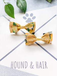 Double Dog Bow tie | Lemon x Leopard