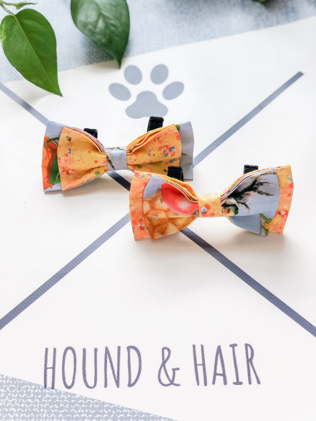Double Dog Bow tie | Fruit Salad x Confetti