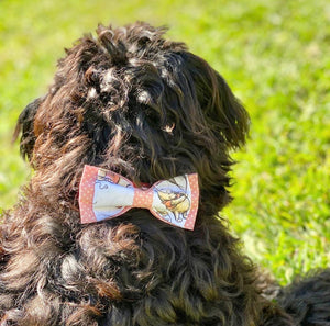 Double Dog Bow tie | Winnie the Pooh x Dots