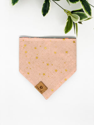 Reversible Snap on Bandana | Wild Bloom Black x Pink Stars