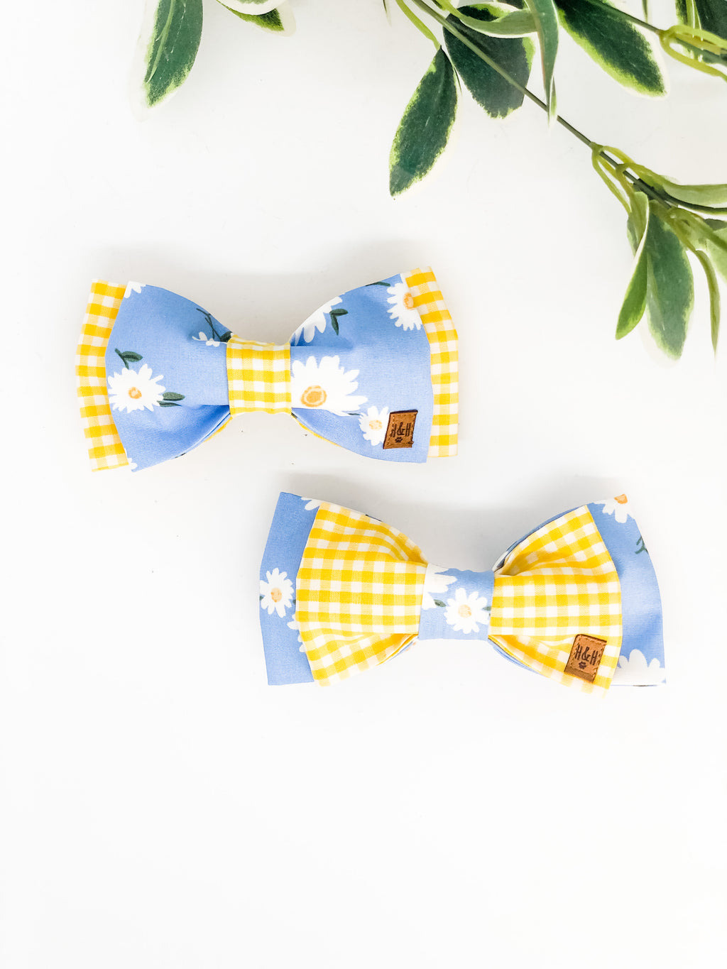 Double Dog Bow tie | Daisy x Yellow Gingham