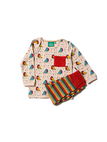 Rainbow Robins Playaway Set