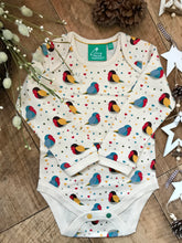 Load image into Gallery viewer, Rainbow Robins Two Pack Baby Body Set