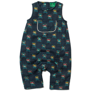 Rainbow Lions Dungarees