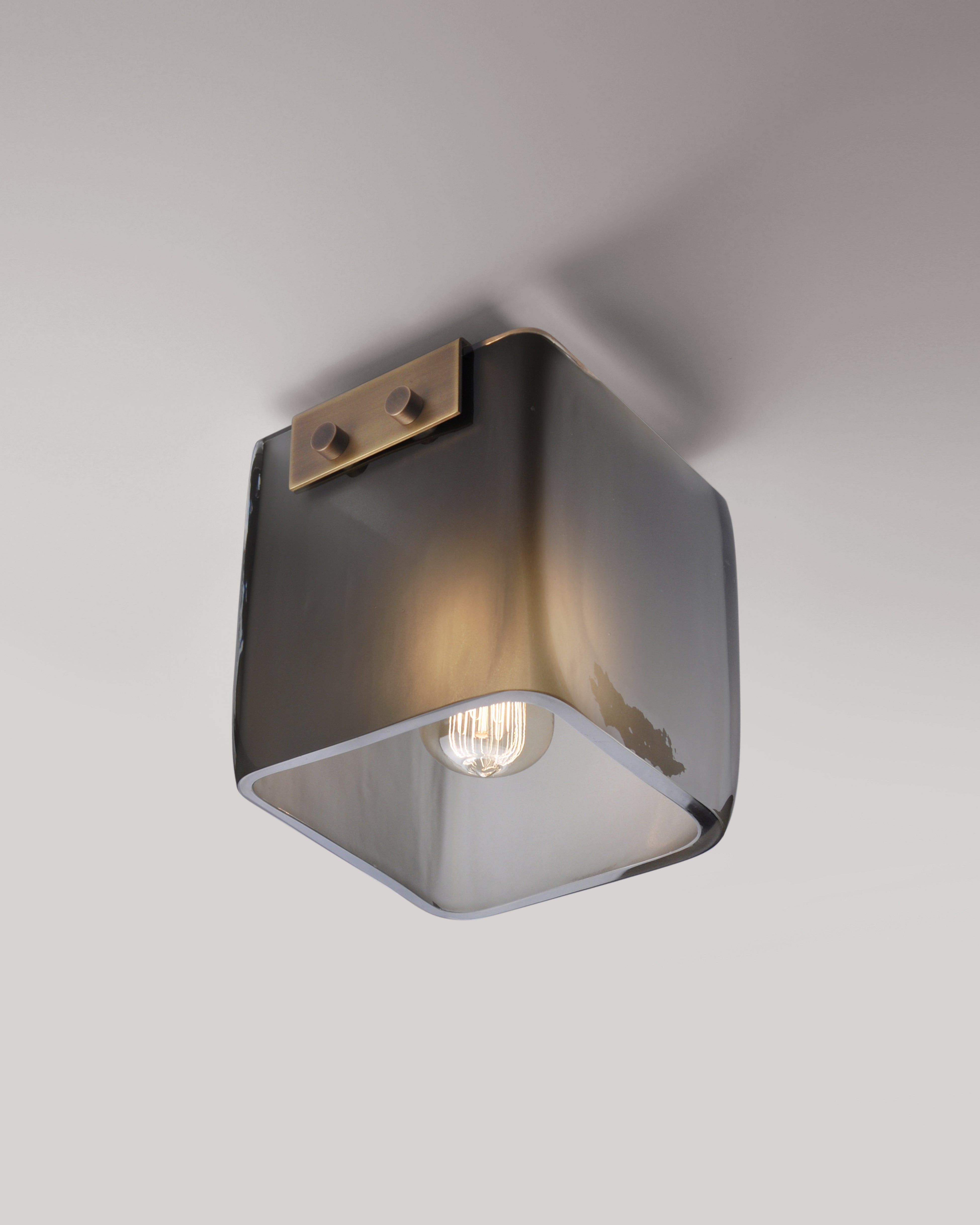 Light Antique Brass with Smoke Frosted