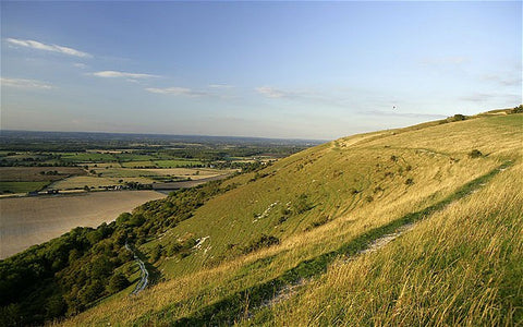 Bramber to Pyecombe via Devil's Dyke