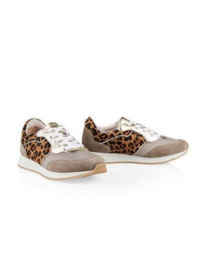 Marc Cain Shoes 3.5 Marc Cain Leopard Print Trainers MB SH.69 L41 izzi-of-baslow