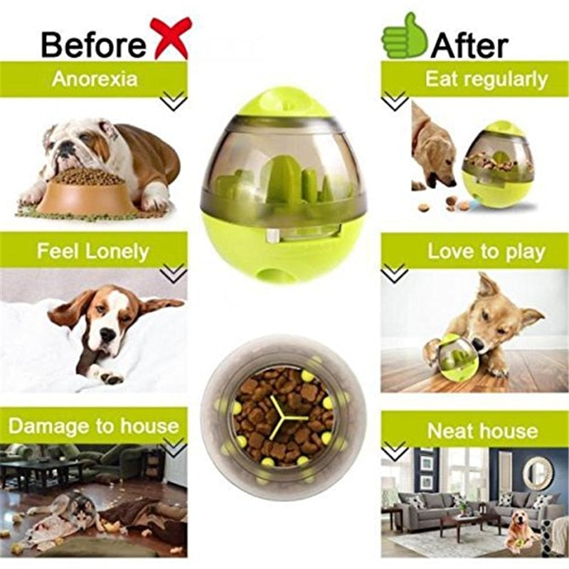 Interactive Dog Food Dispenser & IQ Treat Ball