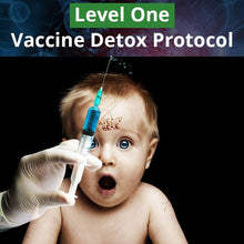 Load image into Gallery viewer, Vaccine Detox Protocol - Level One