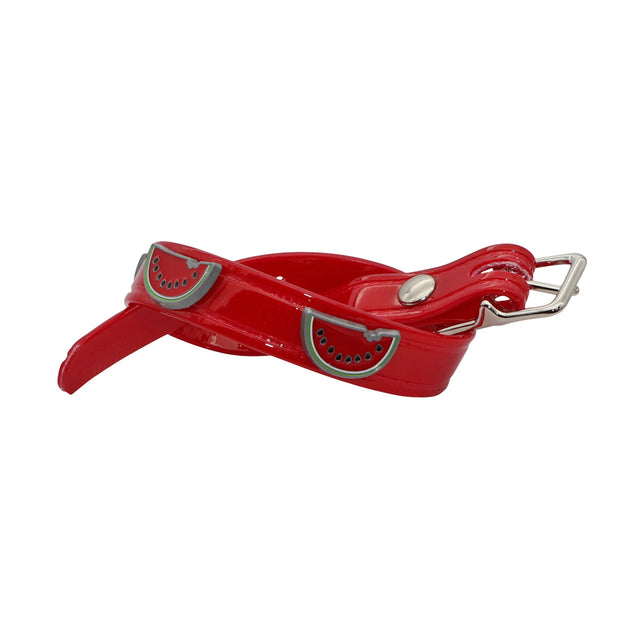 Red Hydro waterproof collar with Watermelons - Yap Wear Store Albert Park | Pet Boutique