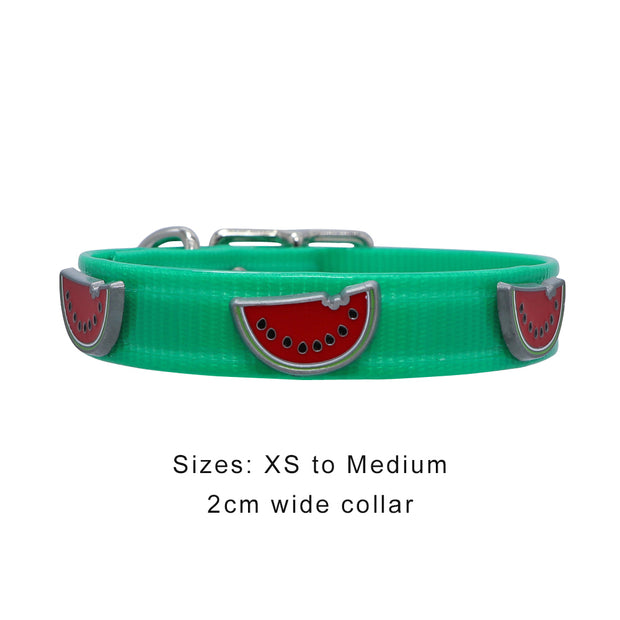 Green Hydro waterproof collar with Watermelons - Yap Wear Store Albert Park | Pet Boutique